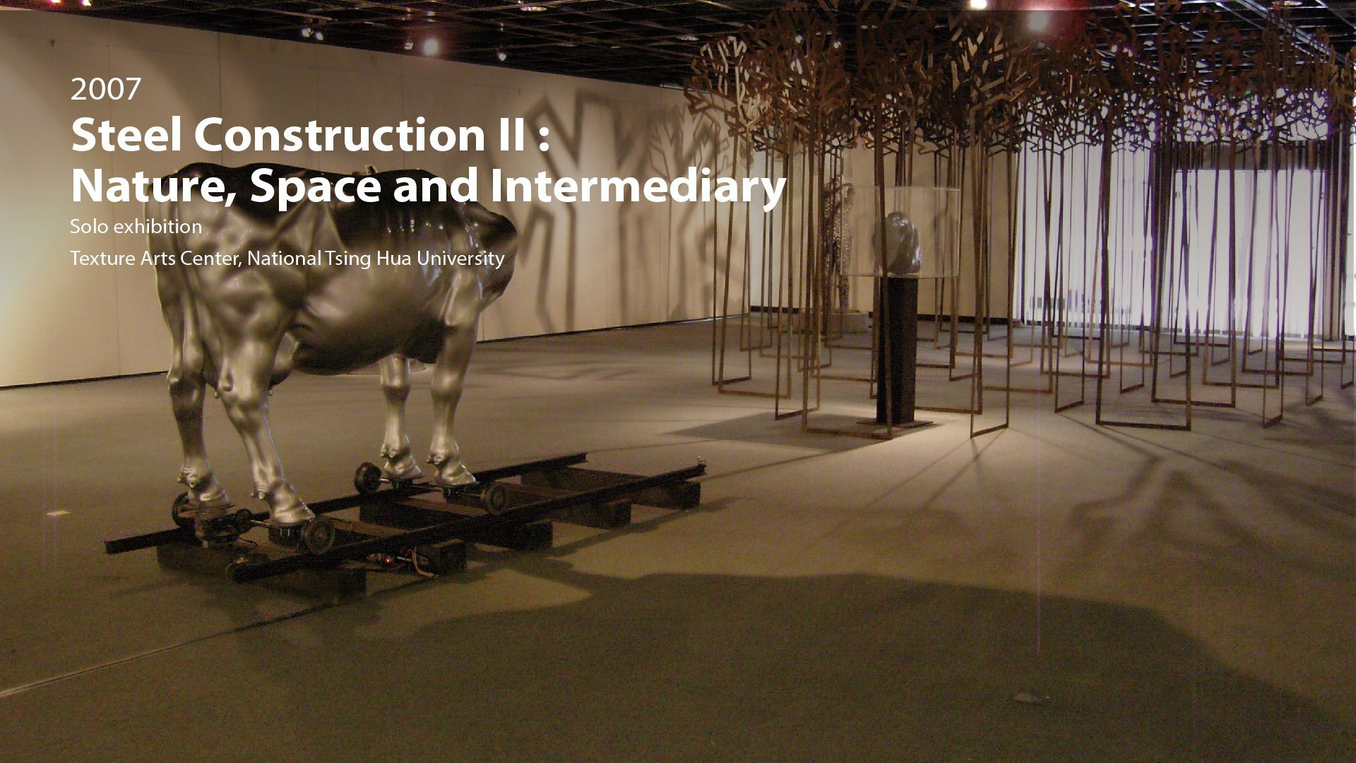 2007|Steel Construction II: Nature, Space and Intermediary -