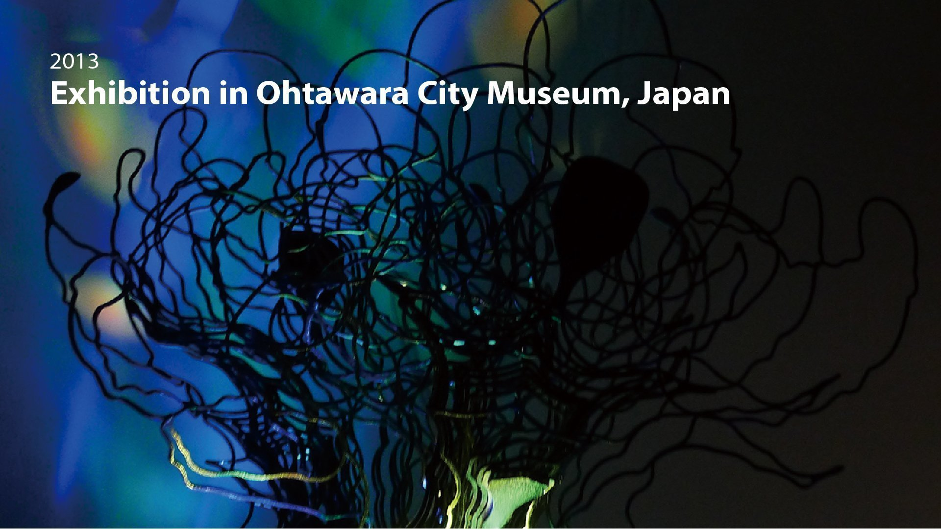 2013|Exhibition in Ohtawara City Museum -